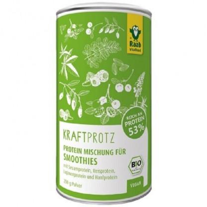 Protein plus BIO mix proteic 53% 200g Raab Vitalfood