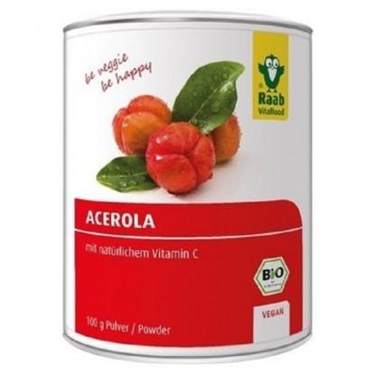 Acerola pulbere BIO (sursa de Vitamina C naturala) 100g Raab Vitalfood