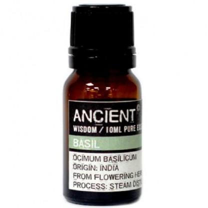 Ulei esential de Busuioc (Ocimum Basilicum) 10ml Ancient Wisdom