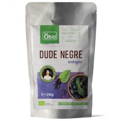 Dude Negre deshidratate Raw BIO 250g Obio