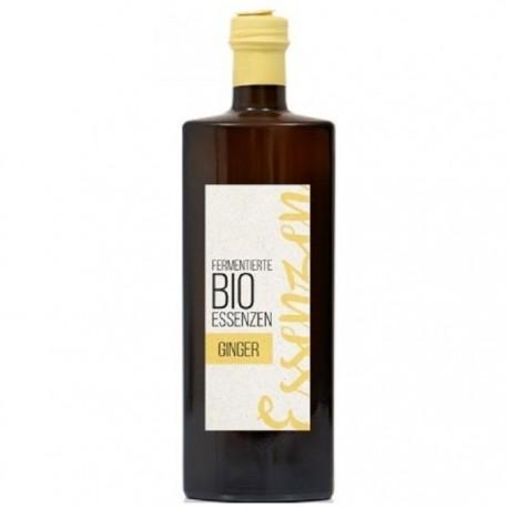 Esenta de ghimbir fermentata BIO 500ml Retter