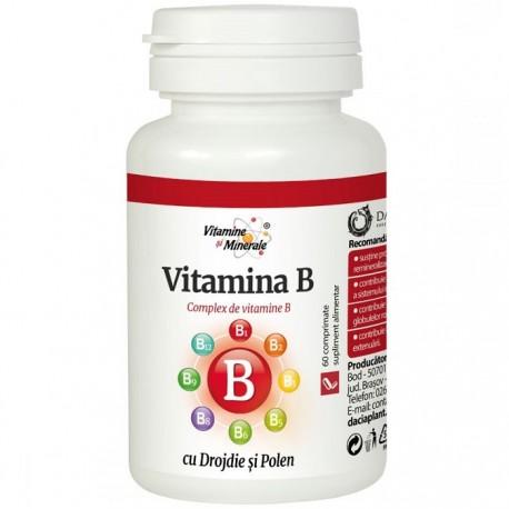 Vitamina B natural din polen si drojdie 60 capsule Dacia Plant