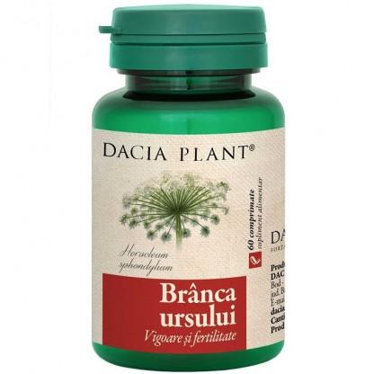 Branca ursului (vigoare si fertilitate) 60 comprimate Dacia Plant