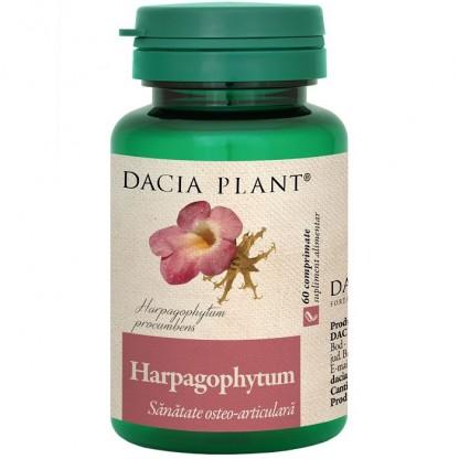 Harpagophytum (sanatatea osteo articulara) 60 comprimate Dacia Plant