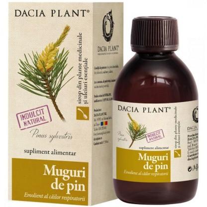 Sirop muguri de pin 200ml Dacia Plant
