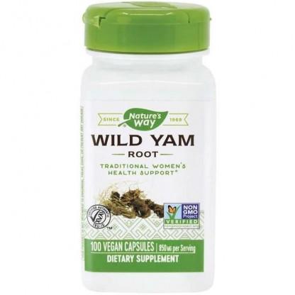 Wild Yam 425mg (reduce discomfortul gastric) 100 capsule vegetale Nature's Way