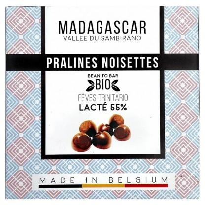 Praline belgiene artizanale cu alune de padure, Madagascar eco 75g Millesime