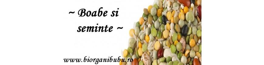 Boabe cereale integrale BIO, pseudocereale, leguminoase
