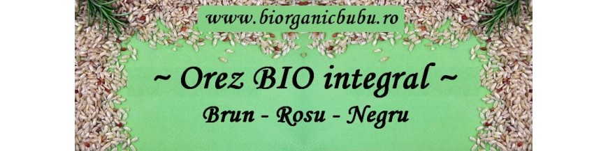 Orez integral BIO (negru, rosu, basmati, brun, jasmine, salbatic)