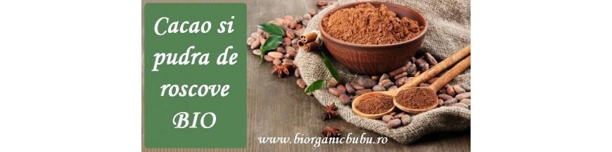 Cacao BIO (pudra, boabe, nibs) si Roscova (Carob)