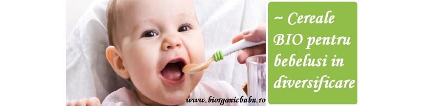 Cereale BIO pentru bebelusi in diversificare