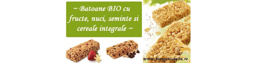Batoane proteice energizante BIO Raw Vegan