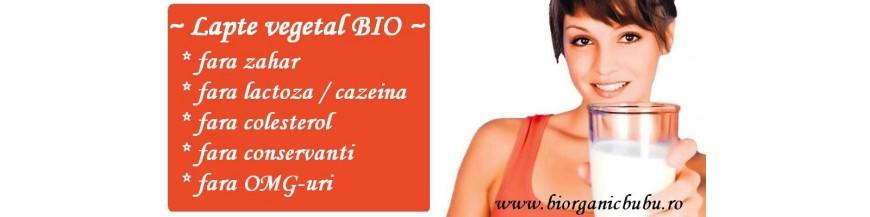 Bauturi vegetale BIO FARA lactoza (cazeina)