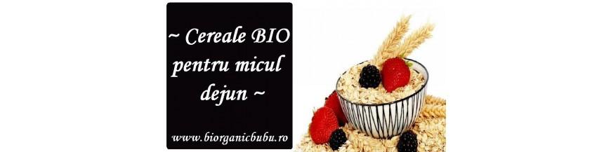Cereale mic dejun BIO fara zahar