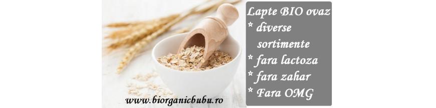 Bautura vegetala de ovaz BIO