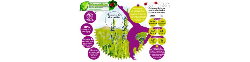Superalimente: fructe si pulberi din fructe / seminte BIO