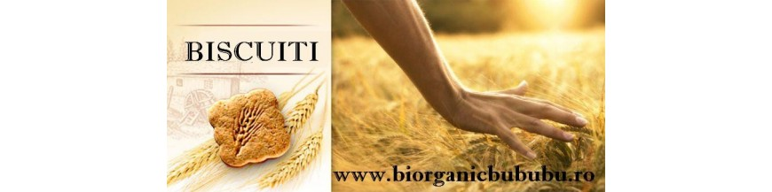 Biscuiti - Gustari - Snacks-uri BIO