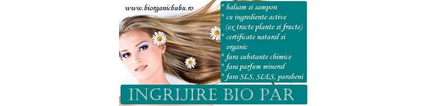 Cosmetice BIO pentru par