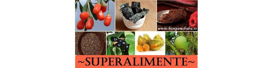 Seminte BIO si pudre proteice naturale