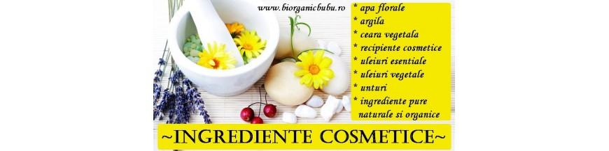 Ingrediente BIO Naturale cosmetice homemade