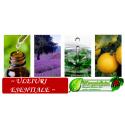 Uleiuri esentiale volatile naturale Bio
