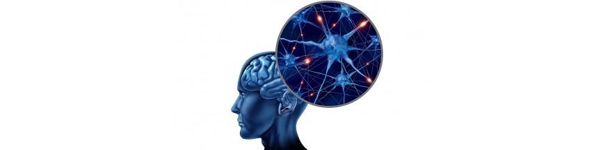 Sanatatea Sistemului nervos - suplimente naturale