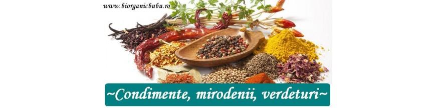 Condimente si mirodenii BIO Organice