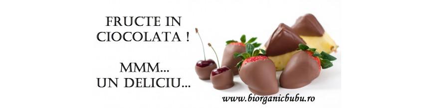 Fructe si seminte in ciocolata BIO