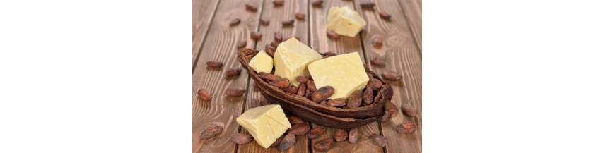 Unt de cacao BIO Organic Uz alimentar