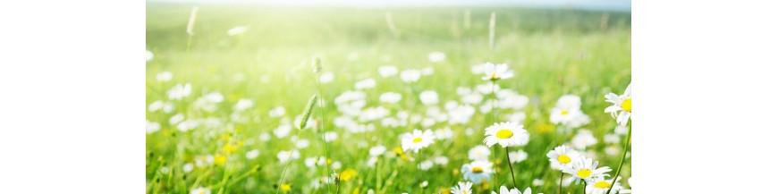 Balsam de rufe BIO Organic Natural