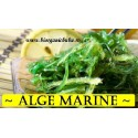 Alge marine BIO si naturale